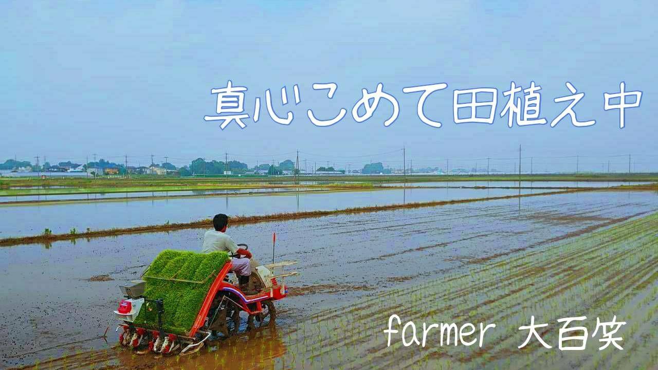 farmer大百笑